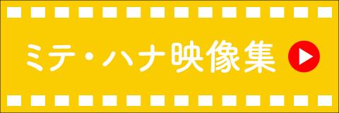 ミテ・ハナ映像集